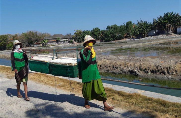 Informasi Penduduk Provinsi Madura Dengan Berkembang Teknologi Perkembangan Jaman